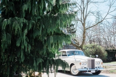 1963 rr with tree